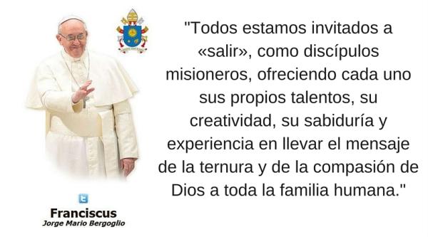 Resultado de imagen de Papa Francisco Domund